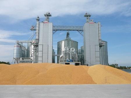 Зерносушилка Сколари